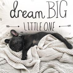 """""""little girls with dreams become woman with vision."""" - Unknown  #dreambig"""