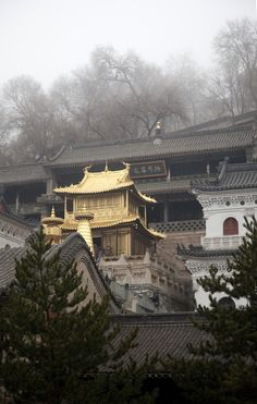 Mt Wutaishan