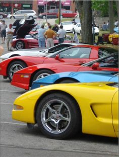 Corvette Fever (I have it year round)