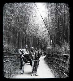 THE BAMBOO ALLEY of OLD KYOTO -- Ca.1897-1900 T. ENAMI Glass Slide from a Stereoview.