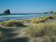 Pacific Northwest Road Trips : Road Trips Usa : Travel Channel