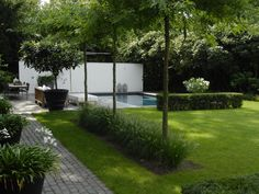 Anne Laansma - Pure simplicity in a modern garden with swimming pool - High ■ Exclusive .