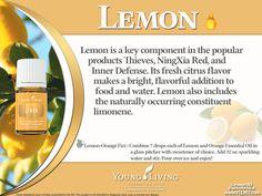 YL Lemon~~Dayna's Young Living member #1893605 www.wellnessandoils.com