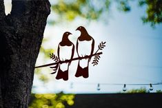 Add a bird silhouettes from Metalbird to your own landscape or give on as a gift. View the collection and get one today. Any Birds, Love Birds, Wood Pigeon, Weathering Steel, Metal Garden Art, Metal Art, Flax Flowers, Forest Habitat, Misty Eyes