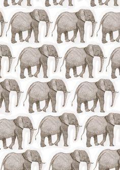 doodoodloo:   I used an illustration I did in year 12 to make elephant wallpaper! - Freya Flavell