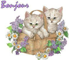"""""""Bonjour"""" - Chatons dans corbeille de lilas et marguerites"""