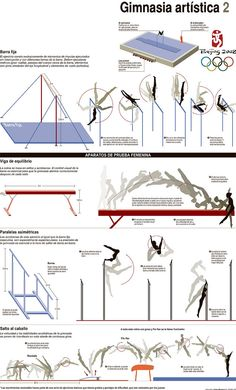 infographics: Gymnastics