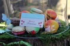 Macaroon cookie display with natural elements like moss, wood, fruits….