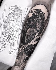 35 ideas tattoo designs drawings sleeve birds for 2019 Crow Tattoo Design, Tattoo Design Drawings, Tattoo Designs Men, Forearm Tattoos, Body Art Tattoos, Sleeve Tattoos, Tattoo Arm, Lower Leg Tattoos, Fox Tattoos