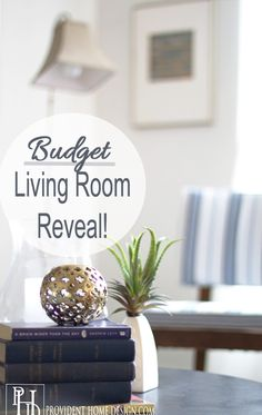 Enjoy this Living Room Makeover on a Budget!  Nothing over $100 not even the furniture!