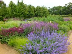 Walled Gardens at Scampston in North Yorkshire | The Main Event, in the centre of the garden around the dipping pond, is the Perennial Meadow. Piet Oudolf has used the style of naturalised planting to give a long season of interest.
