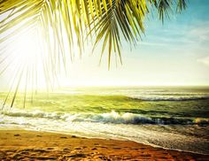 Find Sunset Over Tropical Beach Hdr Processed stock images in HD and millions of other royalty-free stock photos, illustrations and vectors in the Shutterstock collection. Thousands of new, high-quality pictures added every day. Vacation Resorts, Vacation Spots, Beautiful Beach Sunset, Beach Wall Art, Tropical Beaches, Beach Scenes, Nice View, Natural, Stock Photos