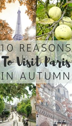 10 Reasons to visit Paris in Fall- Why you should take a trip to Paris, France in autumn!