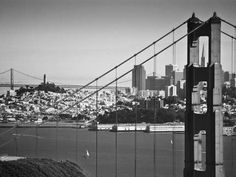 """Beautiful black and white of San Francisco :) """"Essence of San Francisco"""" by Danny Anderson! The newest edition to TurningArt."""