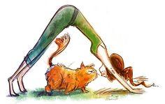 downward dog upward cat :-) by debbie.rose.37