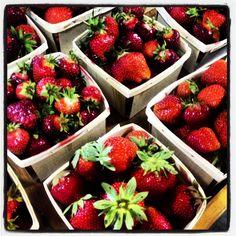 Strawberries grown by Foppema Farm | Northbridge, MA 6.15.2013