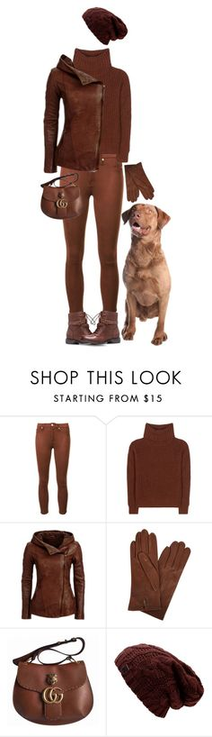 """""""Chesapeake Bay Retriever"""" by rachael-aislynn ❤ liked on Polyvore featuring 7 For All Mankind, Loro Piana, Dents, Gucci, Winter, brown and accessories"""