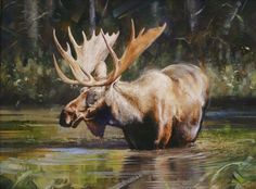 17 Best ideas about Moose Art on Pinterest | Moose decor, Moose ...