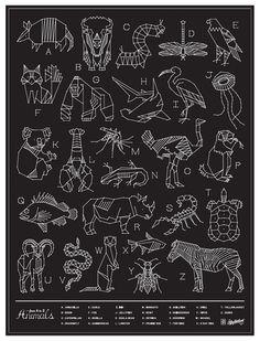 Animals | Curtis jinkins