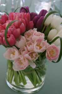 Debi Lilly shares her tulip inspiration!