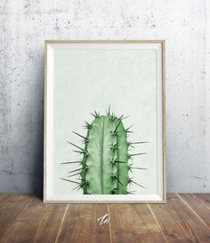 Cactus Plant Print, Cactus Photography, Green Wall Art, Cactus Wall Art, Cactus…