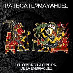 Patecatl, mayahuel