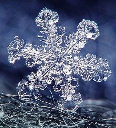 Снежные фантазии: такие милые, нежные и изящные снежинки в работах мастеров - Ярмарка Мастеров - ручная работа, handmade