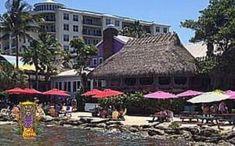 Our Portfolio - Big Kahuna Tiki Huts Tiki Bar Stools, Sales Jobs, Tiki Hut, Cincinnati, New England, Ohio, The Neighbourhood, Palm, Florida