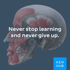 You can do it! #motivational #anatomy #quotes