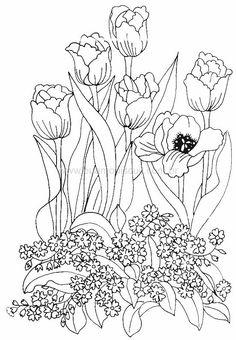 flores232.jpg 551×794 pixels