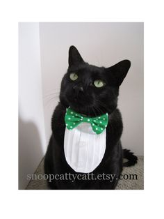 New meaning of tuxedo cat. I think my cat would like mighty handsome with one of these.