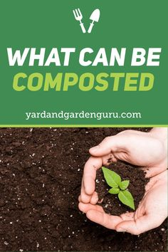 What Can I Compost (A Quick Guide) #sustainable #ecofriendly #eco #sustainability #sustainablefashion #ecofashion #recycle #sustainableliving #reuse