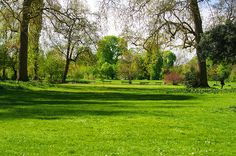 Paris, dans le Bois de Vincennes 135