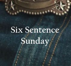 Rhonda Lee Carver: #sixsentencesunday