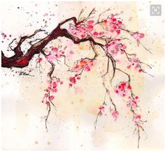 Cherry Blossom inspiration (from Etsy and Pinterest) – Kate Priestley Cherry Blossom Watercolor, Cherry Blossom Tree, Blossom Trees, Watercolor Flowers, Watercolor Paintings, Tattoo Watercolor, Cherry Tree, Watercolours, Cherry Blossom Drawing