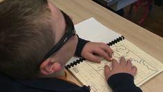 Environ 1,7 million de Français souffrent d'un handicap visuel, soit environ 3% de la population. Parmi eux, 10.000 jeunes aveugles se rendent tous les jours à l'école pour étudier. Pour eux, les manuels scolaires doivent être transcrits en braille, ce qui présente certaines contraintes.Des associations, comme l'association Le Livre de l'Aveugle, réalisent ce travail minutieux.