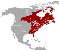 Communism at its territorial peak