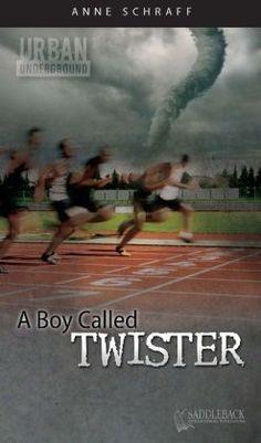 A Boy Called Twister (Urban Underground Series) by Anne Schraff