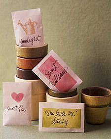 Seed Starter Valentine... Give flower seeds with little pots to your valentine. Use a rubber stamp to make hearts and sweet messages on the packets