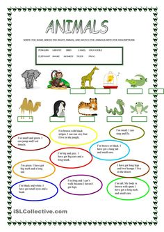 A collection of English ESL worksheets for home learning, online practice, distance learning and English classes to teach about animals, animals Animal Worksheets, Vocabulary Worksheets, Printable Worksheets, English Vocabulary, Animal Riddles, English Lessons, Learn English, Animal Body Parts, English Activities