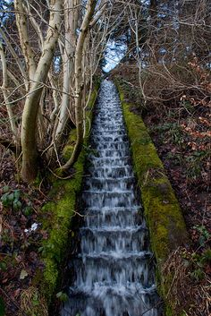 Steps of Water (Yorkshire Dales National Park, England by Simon Fenwick Places Around The World, The Places Youll Go, Places To See, Around The Worlds, England Ireland, England And Scotland, England Uk, Yorkshire England, Yorkshire Dales