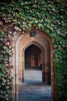 university of sydney....or Hogwarts...?