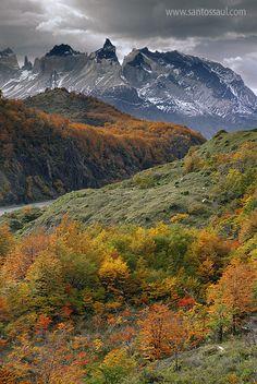 Otoño, Parque Nacional Torres del Paine. Patagonia ChilenaSaul Santos Diaz - photographer