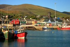 Dingle Harbor - such an adorable town on the southern coast of Ireland.  Loved it here.