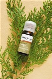 Quality Cypress Wild Crafted Essential Oil from Tisserand