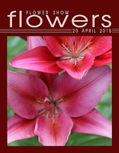 20 April 2015… A Year in Flowers PLANT LIST: Lilium (Lily)  www.FlowerShowFlowers.com For Floral Design…TIPS, PICS,  MAGAZINE and HELPFUL HINTS