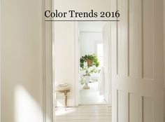 Benjamin Moore Color of the Year Simply White OC-117