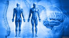Psoriatic arthritis can affect your joints, skin, and much more. Discover how to ease psoriatic arthritis symptoms, from head to toe. Psoriatic Arthritis Symptoms, Arthritis Diet, Knee Arthritis, Types Of Arthritis, Juvenile Arthritis, Arthritis Hands, Coaching, Natural News, Mental Training