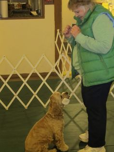 Dog lovers pour their hearts into Wampanoag Kennel Club