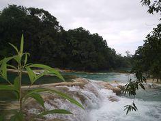 Cascadas de Agua Azul. Tumbalá, Chiapas